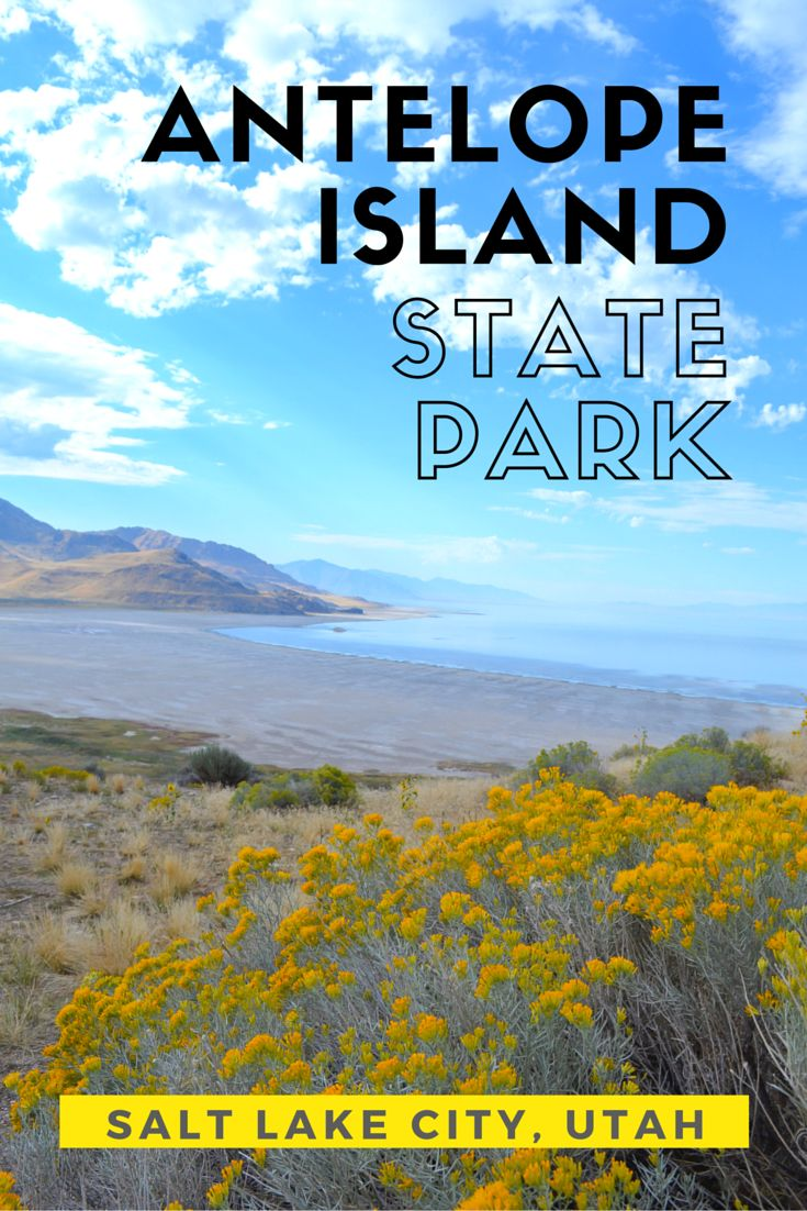 Antelope Island State Park, Utah >> The most excellent day trip from Salt Lake City! | http://apassionandapassport.com/2016/03/antelope-island-state-park-utah/