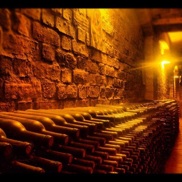 #Wine #bottles  by andrea_descans, via Flickr