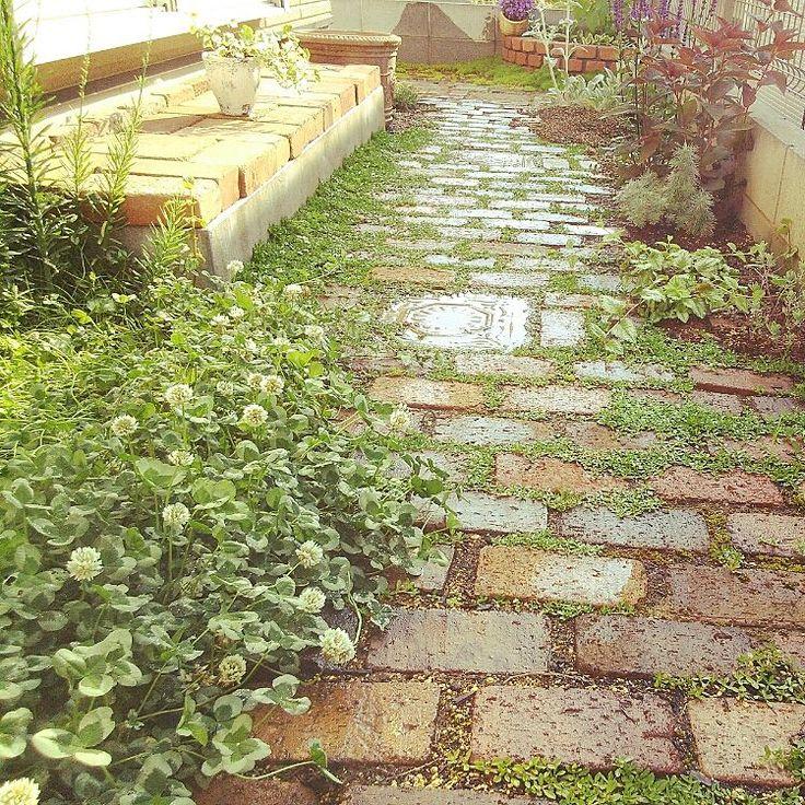 癒やしの空間/ガーデン/花壇/レンガ/RC西東京支部/ガーデニング…などのインテリア実例 - 2016-05-22 06:00:26 | RoomClip(ルームクリップ)
