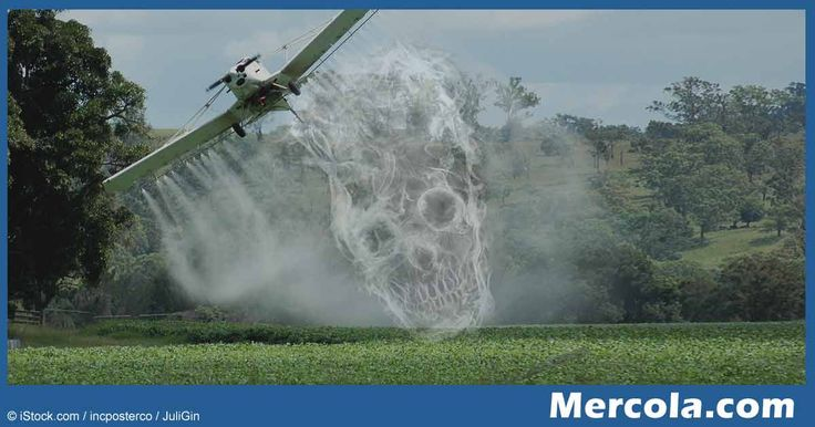 Monsanto release Roundup Ready Xtend, designed to tolerate Roundup and dicamba…