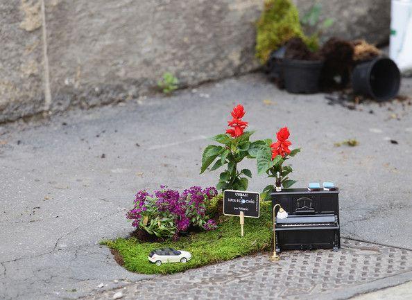 30 migliori immagini steve wheen su pinterest giardini - Giardino in miniatura ...