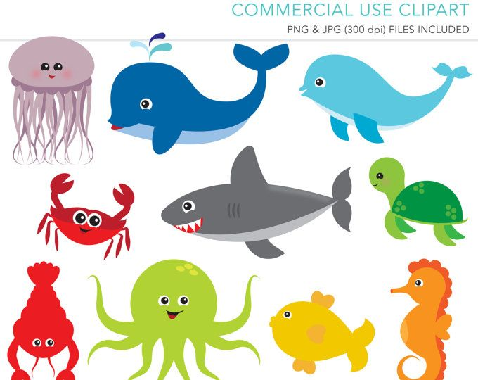45++ Sea animals clipart png ideas