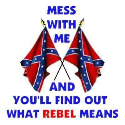 girly confederate flag - Google Search   Confederate Flag stuff ...
