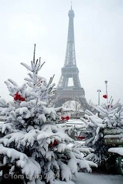Paris at Christmas... incredible.
