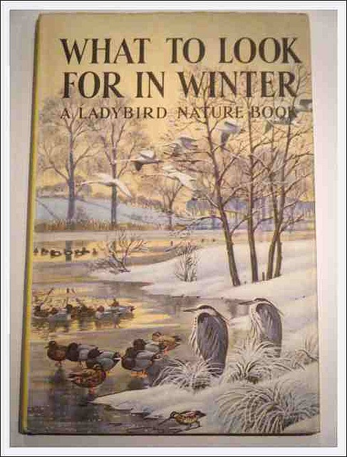 What to look for in Winter - a Ladybird book
