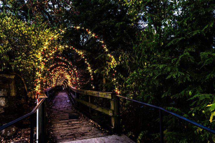 17 best images about the enchanted garden of lights on - Rock city enchanted garden of lights ...