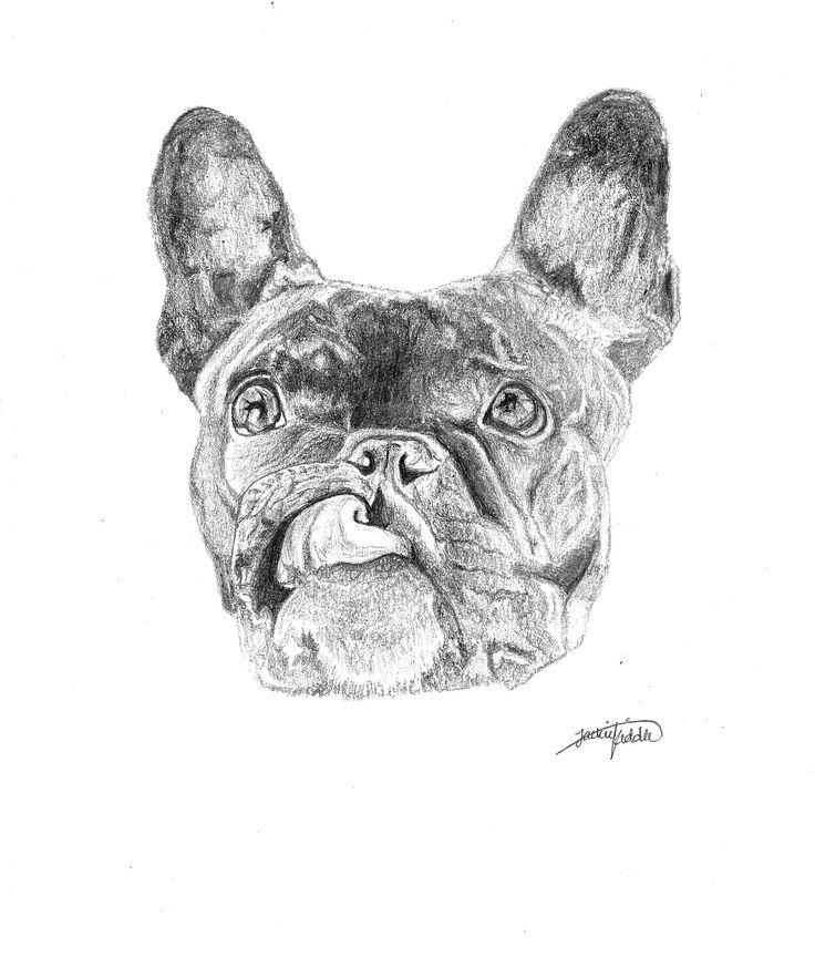 French Bulldog $25 Print, art, drawing www.petsbypencil.co.nz