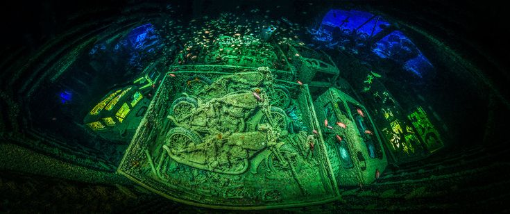 A sunken WWII vessel inspired the photographer who snapped a haunting underwater image.
