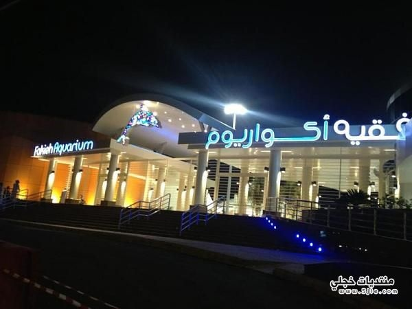1000+ images about The Fakieh Aquarium of Jeddah on Pinterest Posts ...