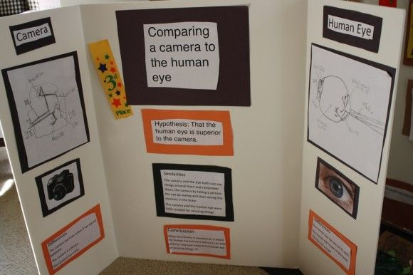 10 Science Fair Project Ideas how are a human eye and camera lens different?