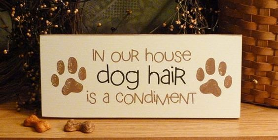 In Our House Dog Hair Is A Condiment Funny Painted Wood Pet Sign ...