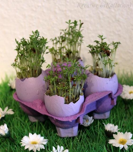 Garten: Kresse säen