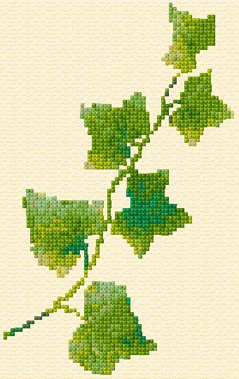 Ivy, found on : http://www.cross-stitch-pattern.net/Ivy-31-4-Free-Design.aspx