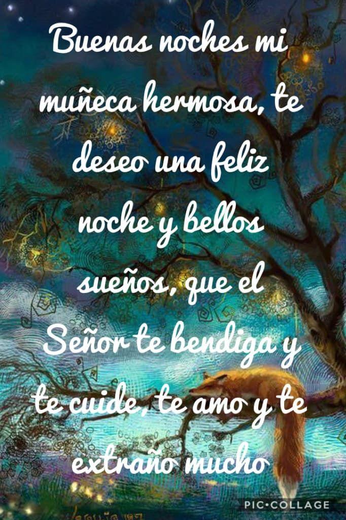 Buenas noches mi muñeca hermosa, te deseo una feliz noche y bellos sueños, que el Señor te bendiga y te cuide, te amo y te extraño mucho
