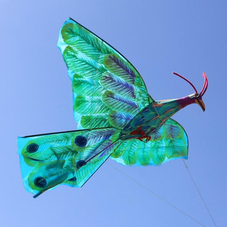Handpainted kite, 'Jade Java Peafowl'