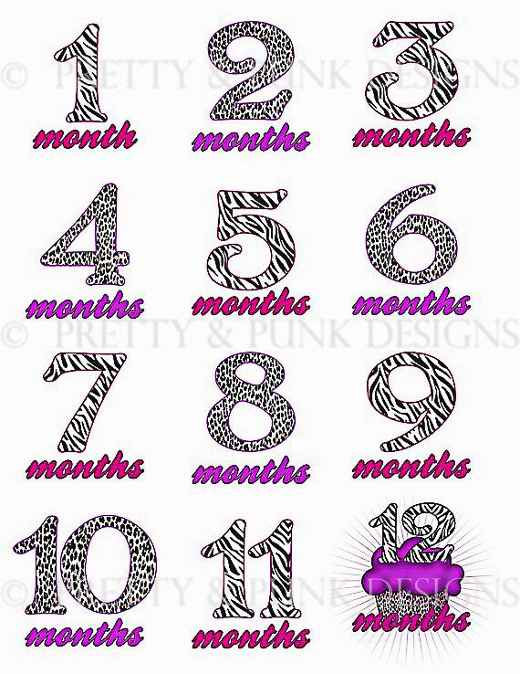 Monthly Baby Sticker Set of 12 months by prettyandpunkdesigns, $10.50  Celebrate your babies transition from newborn to tod… | Monthly Onesie  Stickers ...