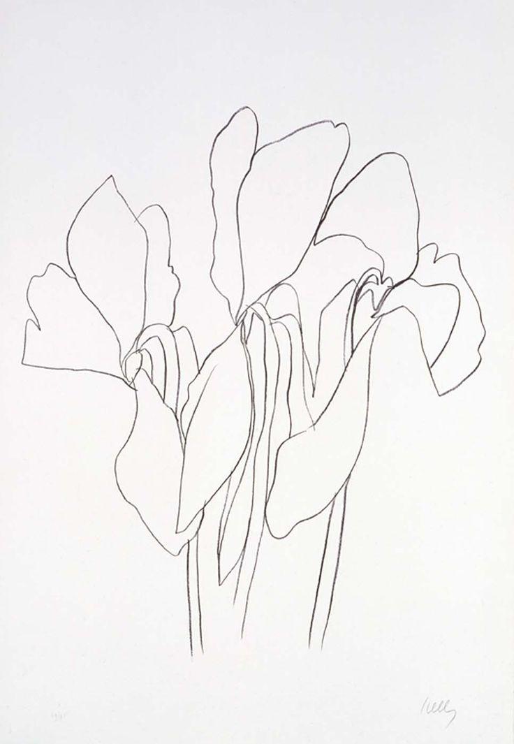 Matisse Contour Line Drawing : Line drawing matisse pixshark images galleries