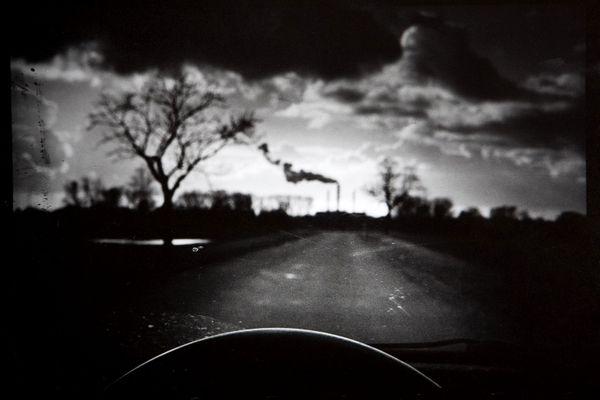 gallery - Adam Wolf