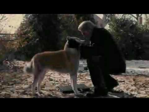 111 best images about Hachi-ko on Pinterest   Loyalty, Kos ...
