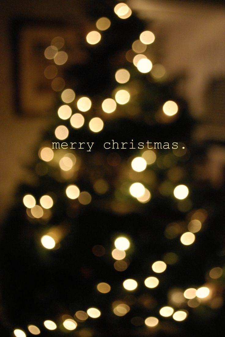 Christmas Aesthetic Christmas Tree Bokah Christmas Tree Wallpaper Iphone Wallpaper Iphone Christmas Merry Christmas Wallpaper