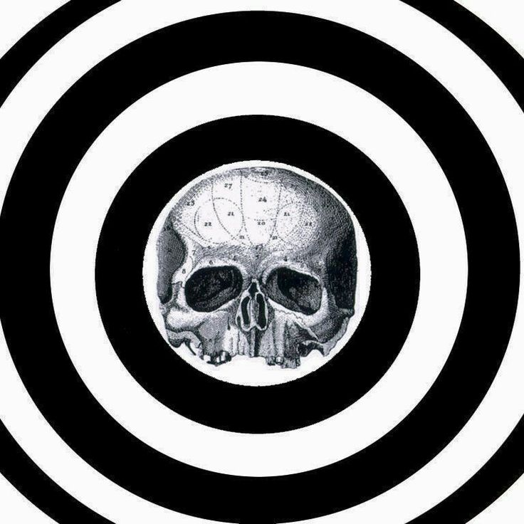 Bullseye Amp Skull B L S Bls Black Label Society