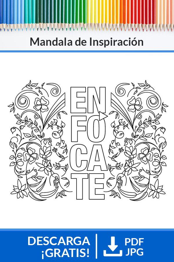 Frase Enfocate Con Imagenes Bullet Journal Doodles Mandala