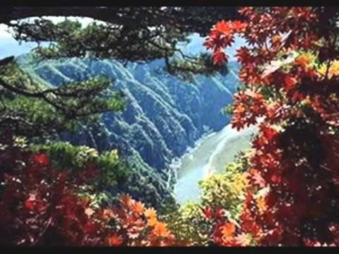 Fák,virágok,fény-Zalatnay Sarolta - YouTube