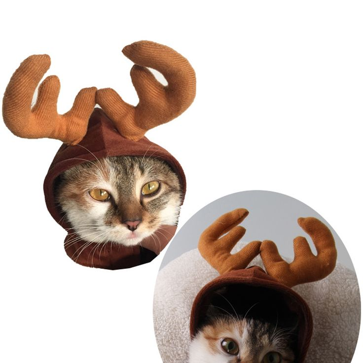 1Pcs Headbands Dog Antlers Cap Pet Supplies Dog Cat Hat Deer Hats Teddy Dog Antlers Dog Gentleman Caps Christmas Hat Pet Costume //Price: $3.99 & FREE Shipping //     #pet #animals #animal #dog #cute #cats #cat