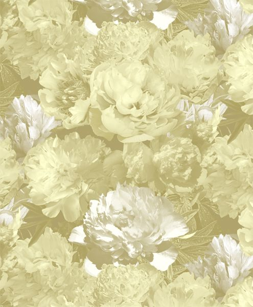 Rapport design The peonies - www.surfacesdesign.ru