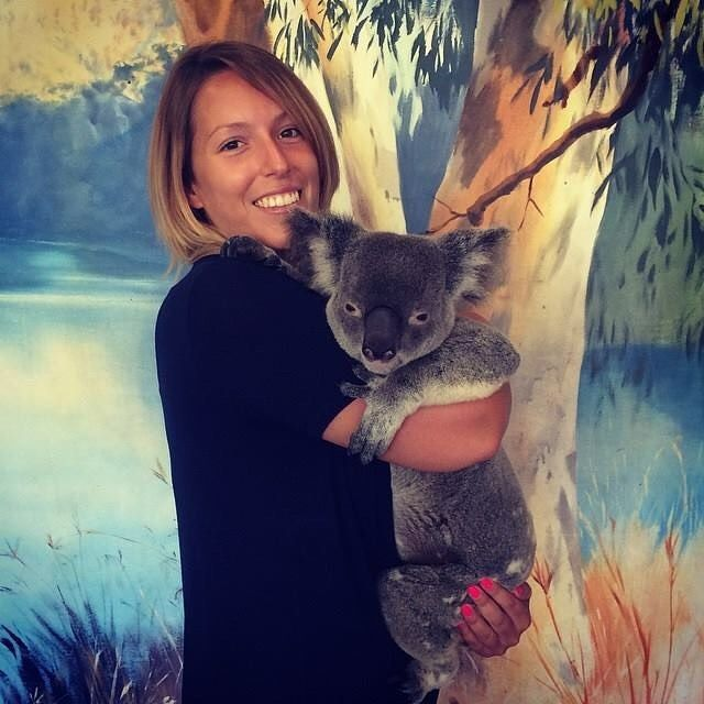 #SMLmatka  Make new friends while studying English in Australia, even a Koala bear friend like our student Alice . Share if you think this little #Koala is so cute!