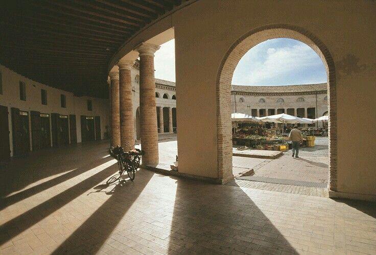 Il Foro Annonario...visto dall' interno delle sue arcate e colonne. Senigallia…