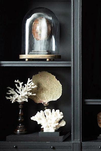 CORAL Decorations!
