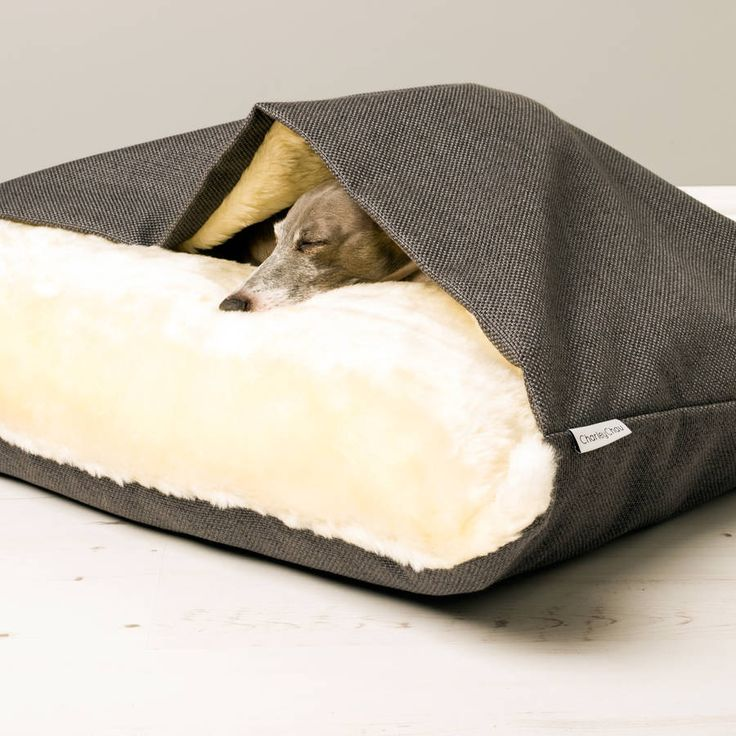 Best 25 large dog bed diy ideas on pinterest small for Large dog bed ideas
