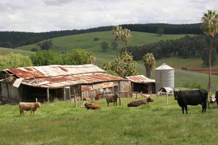 Farm Buildings at Spring Gully Road