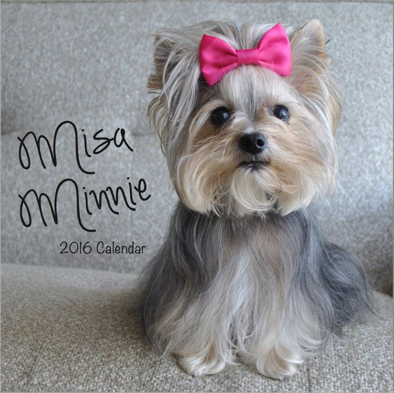 Misa Minnie 2016 Calendar by MisaMinnieStore on Etsy