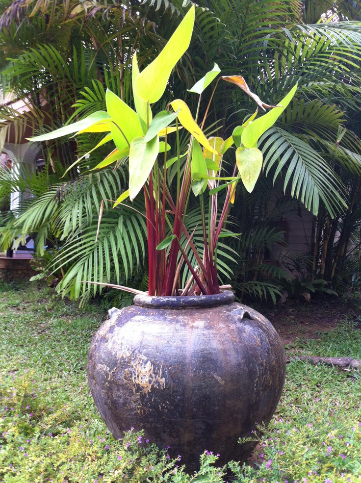 Kameninová váza v zimní zahradě vhodná i do exteriéru
