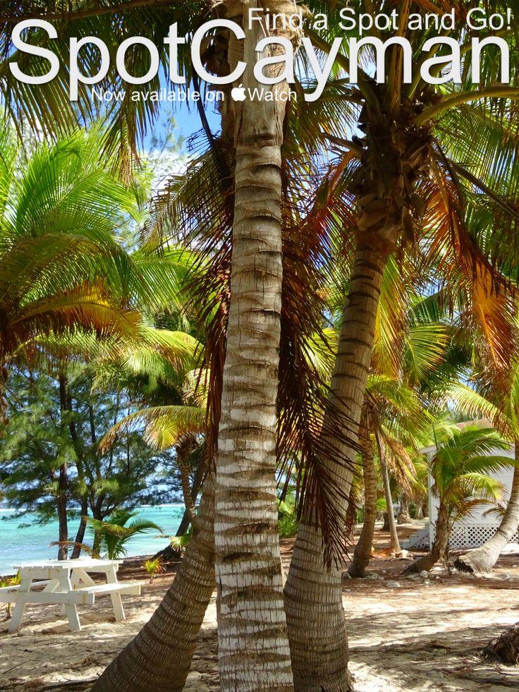 Picnic Spots in Grand Cayman