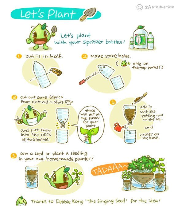 self watering planter from plastic bottle