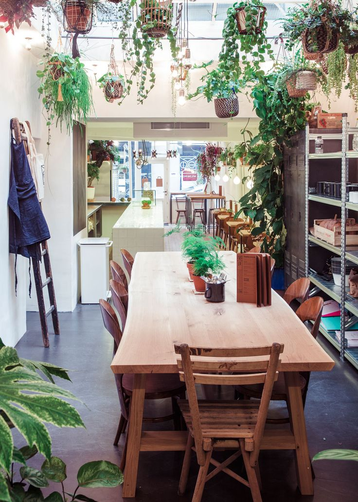Vegan meals and excellent juices/smoothies. Beautiful space too.   Wild&TheMoon_Janv2016_Paris_Jerusalmi_00269