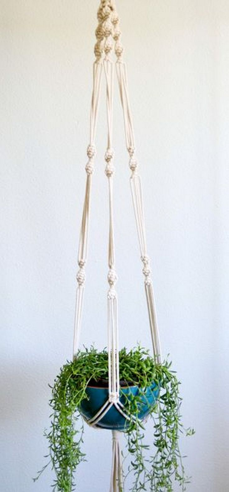 macrame plant hangers diy 400 best macrame is back images on macrame 3530