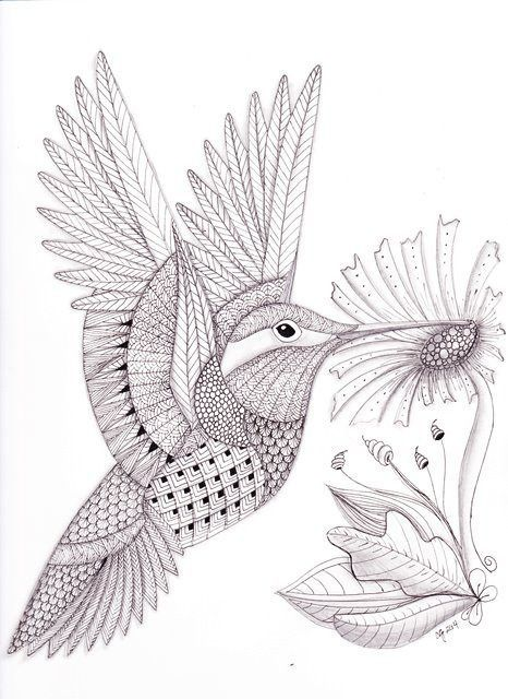 Tangled Hummingbird web | Zentangle drawings, Bird ...