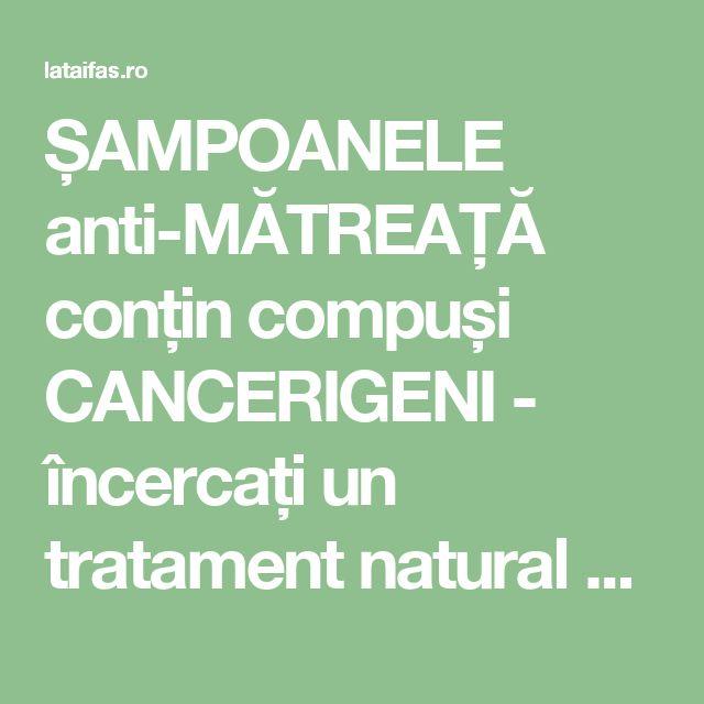 ȘAMPOANELE anti-MĂTREAȚĂ conțin compuși CANCERIGENI - încercați un tratament natural cu MIERE și OȚET | La Taifas