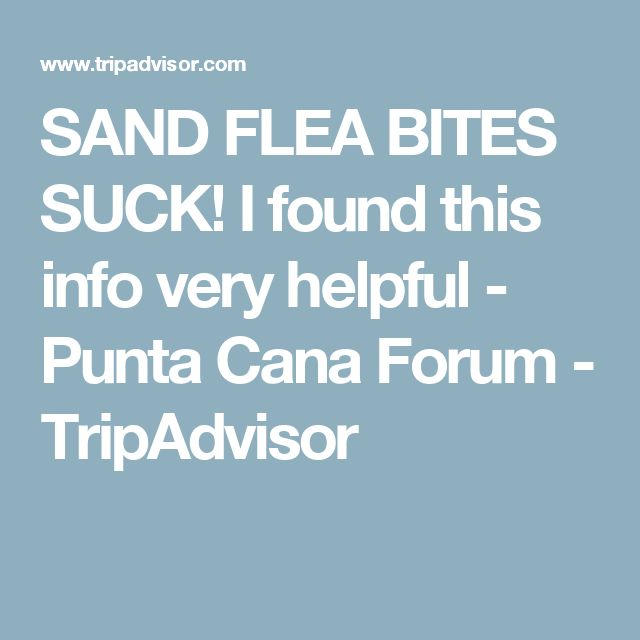 SAND FLEA BITES SUCK! I found this info very helpful - Punta Cana Forum - TripAdvisor