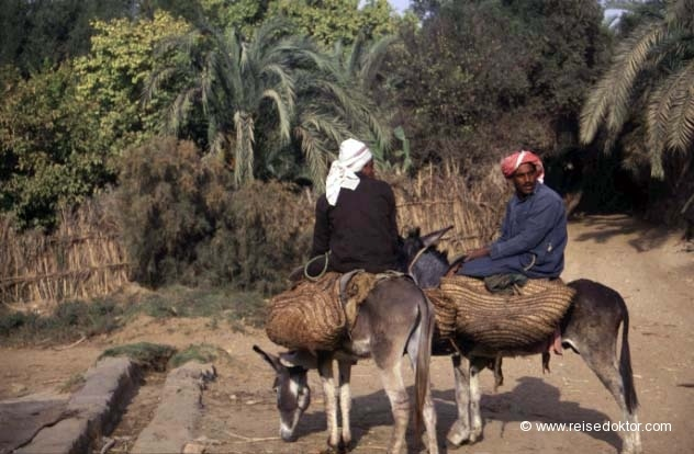 Ägypten  www.reisedoktor.com