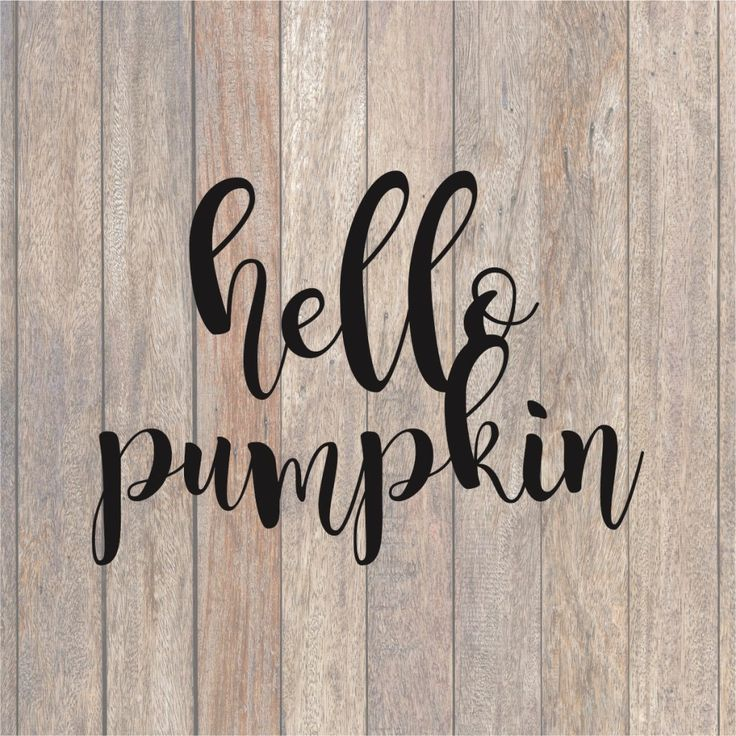 Hello Pumpkin SVG File (With images) Sign quotes, Making