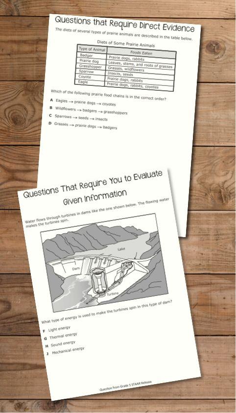 5th grade social studies essay questions