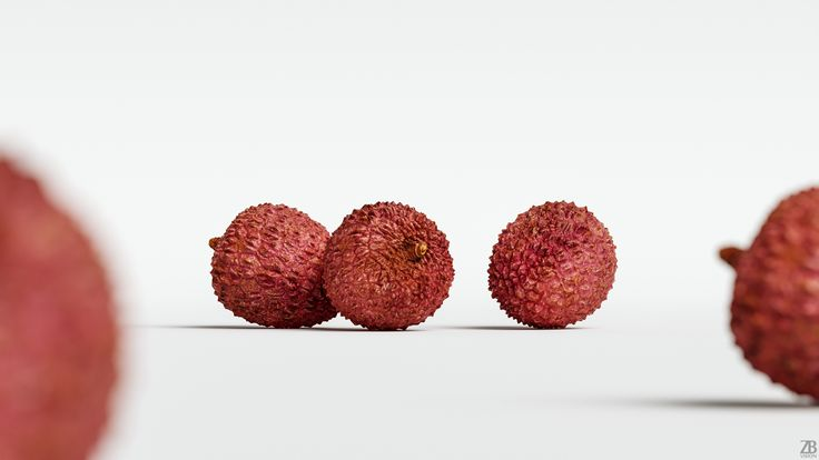 Lychee 3D model is available here:  https://3docean.net/item/lychee-003/20565113