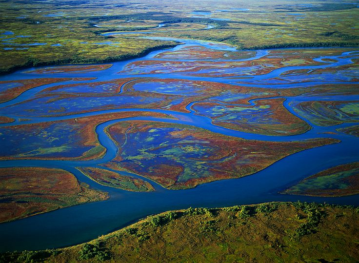 "NO PEBBLE MINE #64 Pictures from Ground Zero: The #Kvichak connects #LakeIliamna to #BristolBay and it IS a big river fed by many other large rivers. This is known as ""#TheChannels"" and if you look closely, at the top-middle of this image, you will see a substantial #inflow to the Kvichak from another drainage. The Channels are an important destination for recreational fishermen, and also for the 6 #Native #villages that are located on the shore of the river. Photograph © 2013…"