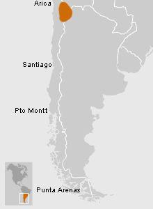 mapa donde se sitúa la cultura Atacameña