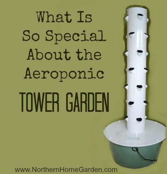 What Is So Special About the Aeroponic Tower Garden